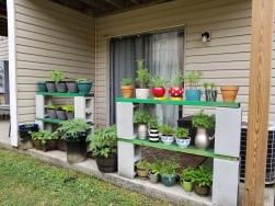 SE's patio garden